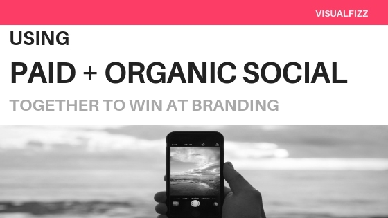 VF paid and organic social media strategies